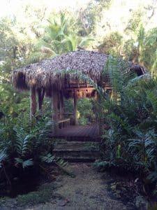 Gardens at Bonnet House, Fort Lauderdale