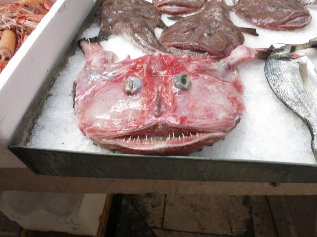 Monk Fish at The Split Fish Market (Ribarnica)