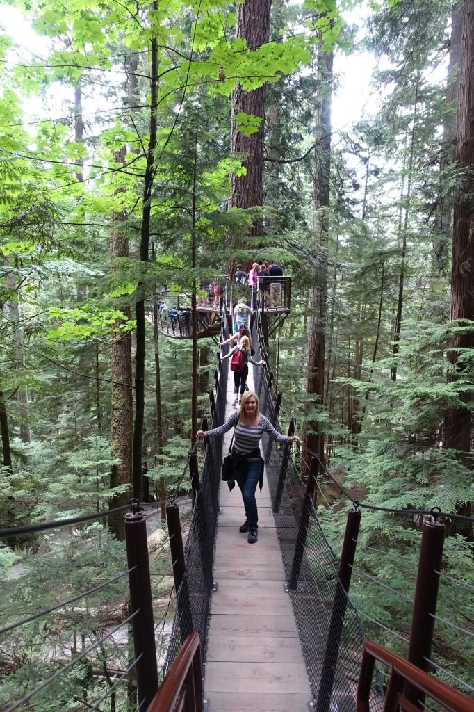 Treetop Adventure, Capilano Suspension Bridge Park