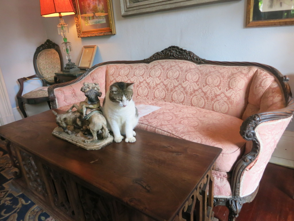 Hemingway's Six-Finger Cat in the Living Room, Key West