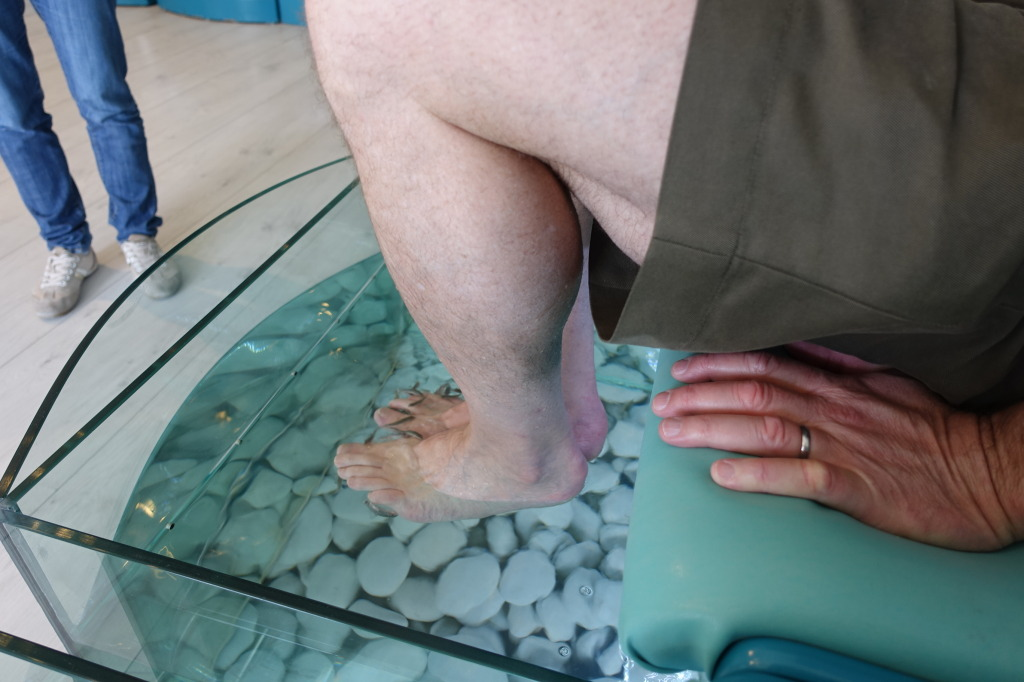 Fish spa pedicure carmen edelson luxury travel blogger for Fish pedicures illegal in 14 states