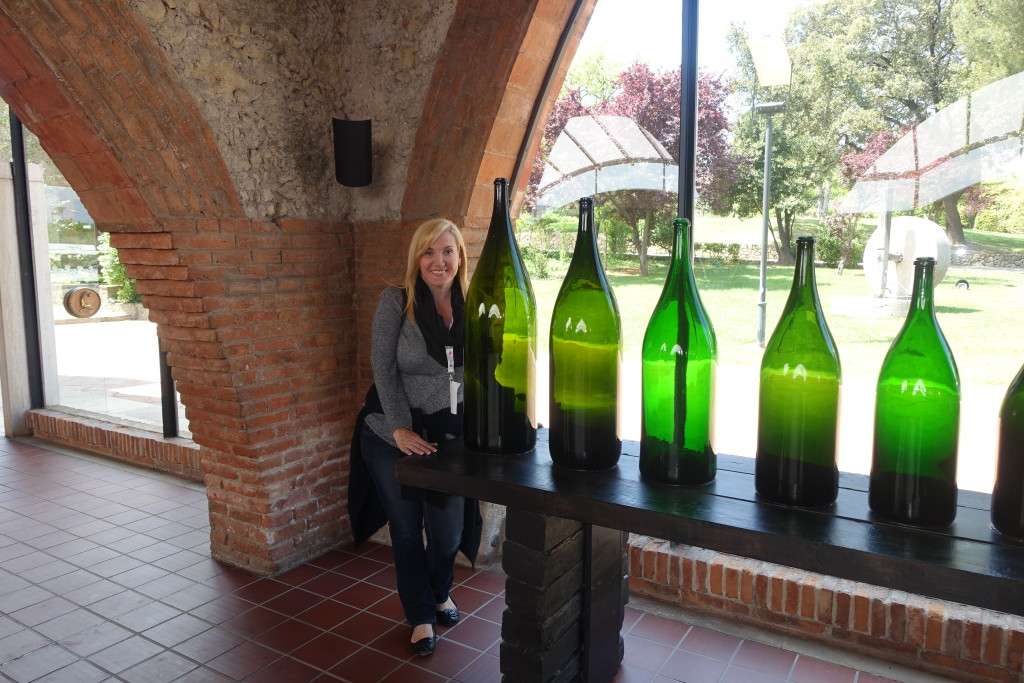 Codorniu Cava Winery Museum and Wine Cellars