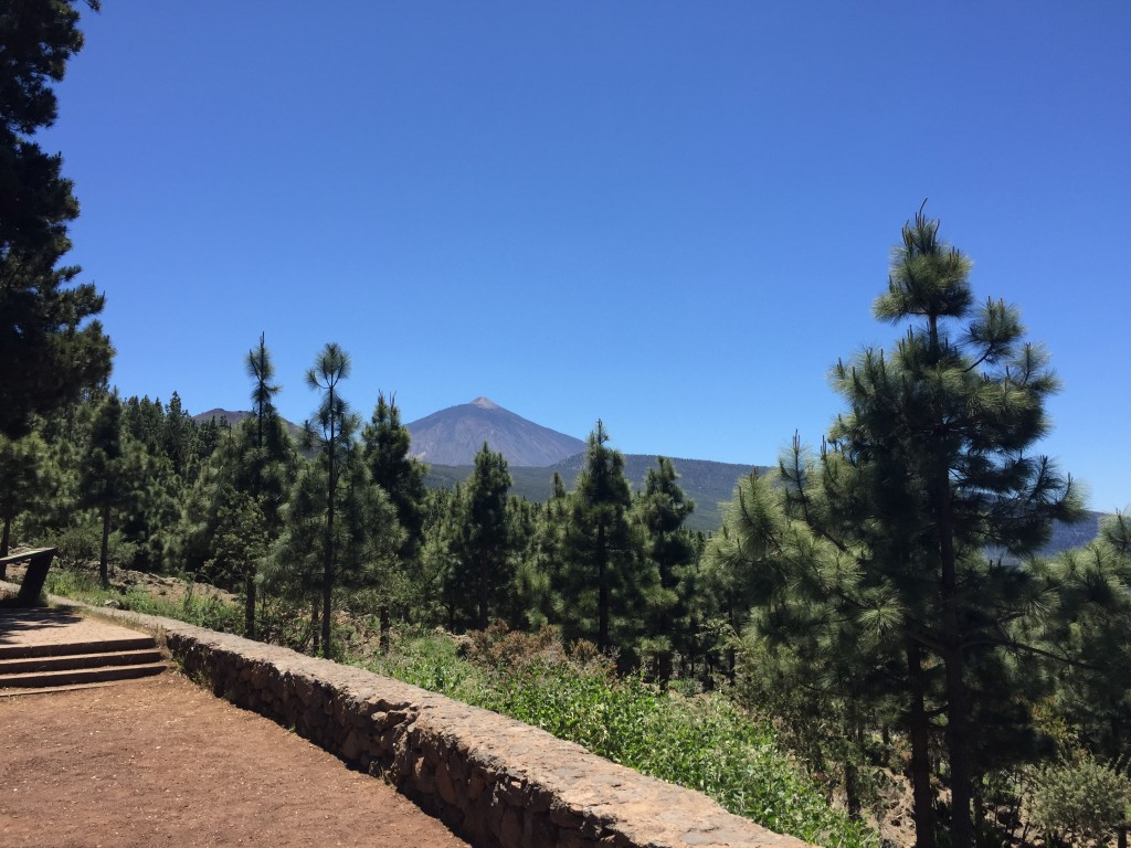 Teide National Park, Tenerife, Canary Islands, Mount Teide - Tenerife