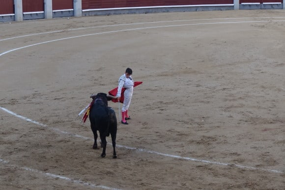 should bullfighting be banned The death of a spanish matador in the bullfighting ring has renewed calls for a  total ban of the bloody tradition and reopened a debate.