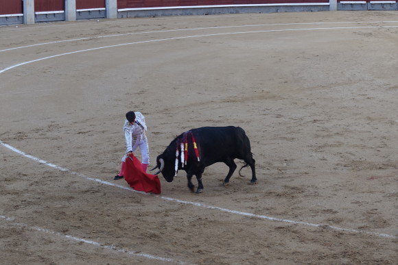 Matador about to make the kill in Plaza de Toros, Madrid