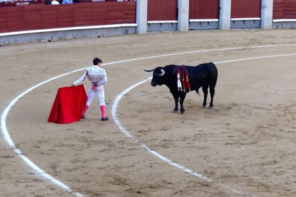 Should Bullfighting be Banned? - Carmen Edelson - Luxury