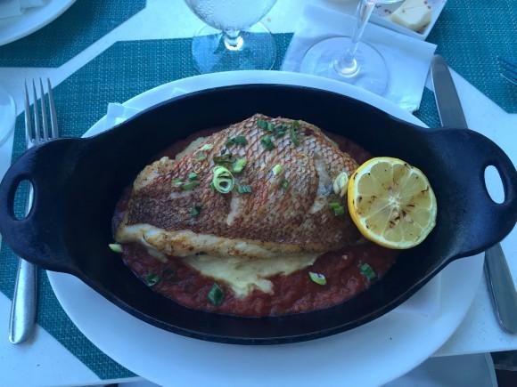 Florida Yellowtail Snapper, Ocean2000 Restaurant
