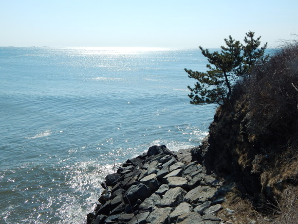 Side of the Cliff and the Ocean