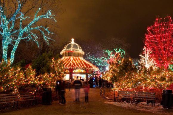 Zoo Lights at Lincoln Park Zoo (Image courtesy of LPZoo)
