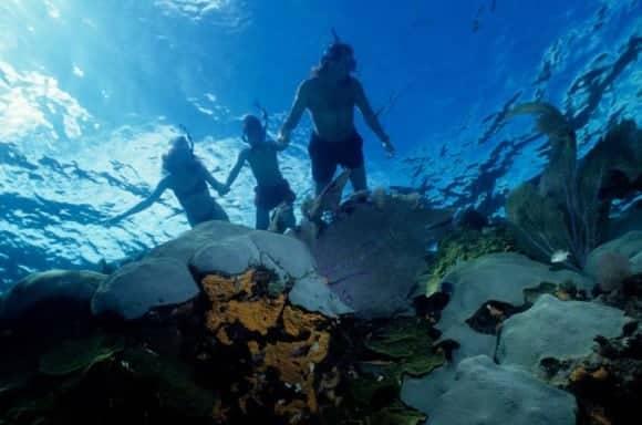 Daily scuba diving courtesy of Key Largo Bay Marriott Resort