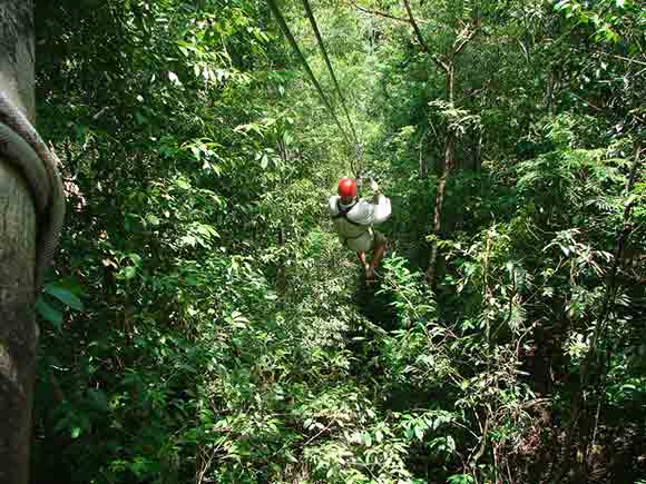 Jamaica Canopy Tour Image by Meghana Kelkar used under CC License