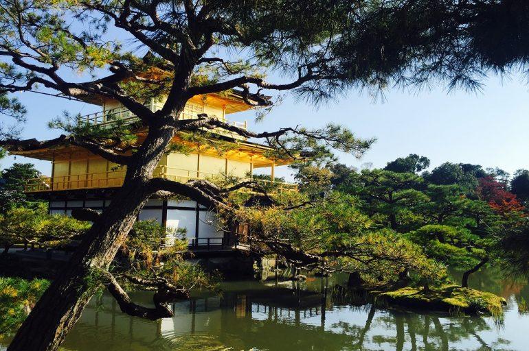 5 Must See Spots in Japan
