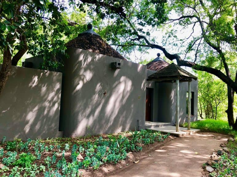 Sabi Sabi Bush Lounge Accommodations