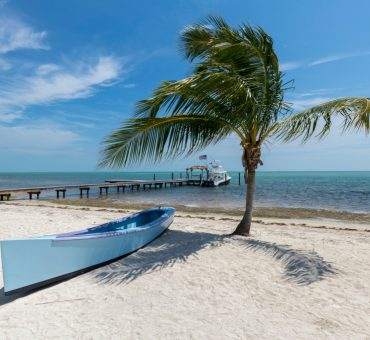 The Florida Keys: A Divine Seafood Experience