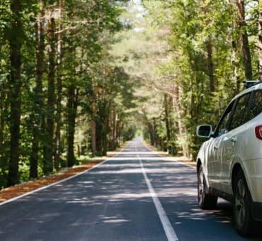Top 3 Road Trip Essentials Everyone Needs